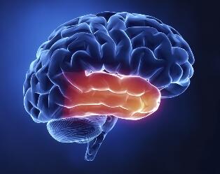 脑瘤术后调理